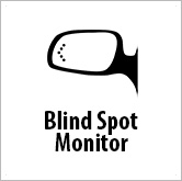 Ico blind spot detection